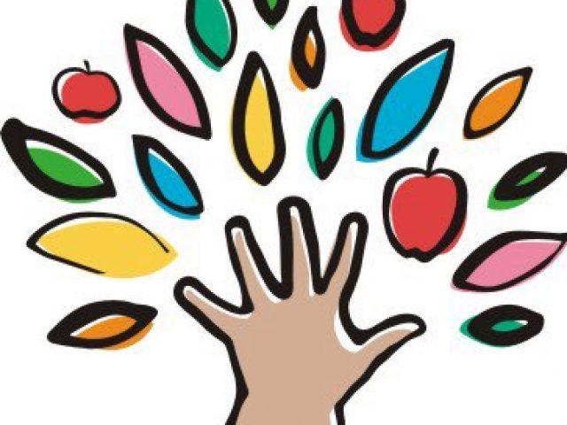 Частный детский сад-нач.школа «Давайте расти»