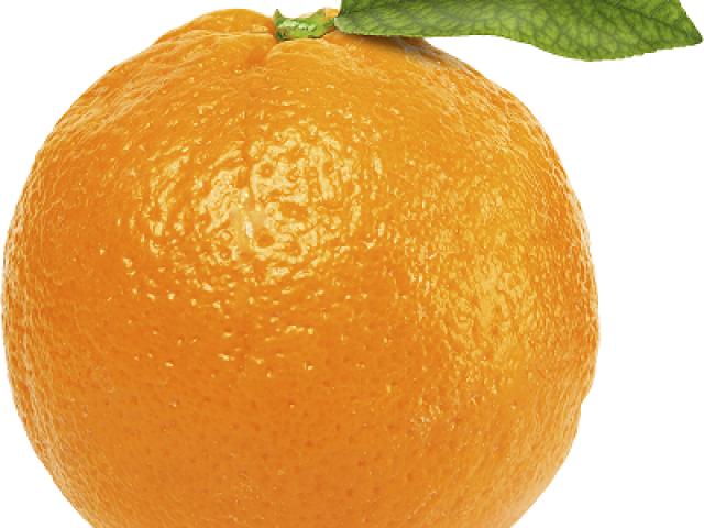 Частный детский сад и начальная школы «Апельсин»